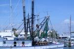 Naples, FL marina